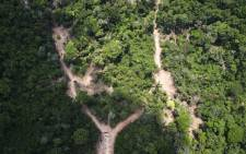 View of an illegal felling area in the Amazon jungle. Picture: AFP.