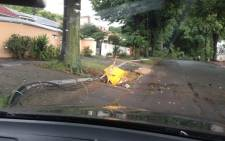The tree has fallen across the street and taken down four street poles with all the electric cables after storm struck a massive tree in Beryl Street Cyrildene. Picture: Supplied.