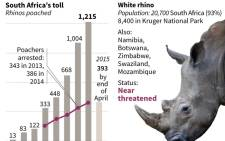 Graphic charting the number of rhinos poached in South Africa. Source: AFP.