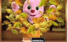 Duracell Bunny. Picture: Facebook.