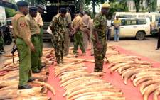 FILE: Kenyan police officers inspect around 300 pieces of ivory, including 228 elephant tusks on 5 June, 2014. Picture: AFP.