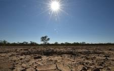 Local govt and disaster management are today expected to visit areas hardest hit by the drought. Picture: AFP.