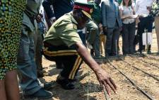 A senior army representative sowing some of the first industrial hemp crop in Zimbabwe at the Harare Central Prison in the capital, on 11 October 2019. Picture: AFP