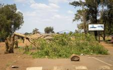 A felled tree barricades the entrance to Sicelo informal settlement in the Midvaal. The community has been up in arms, protesting against a lack of service delivery. Picture: Thomas Holder/EWN