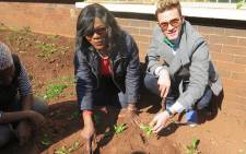 Public Protector Thuli Madonsela (Left) digs into the ground while planting plants for Mandela day with SA designer Gert-Johan Coetzee (Right) on 18 July 2016. Picture: Louise McAuliffe/EWN