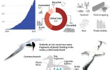 Graphic on plastic production and disposal and how it is entering the food chain. Picture: AFP