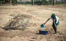 A school girl tries to collect water from a dry puddle in Nongoma, in KwaZulu-Natal, which has been badly affected by the recent drought. Picture: AFP.