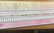 A general view of a ballot paper. Picture: Nthakoana Ngatane/EWN.