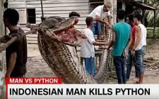 2017/10/06 Indonesian man kills 7m python which blocked a road. CNN/screengrab