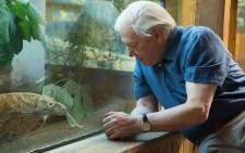 David Attenborough at the London Zoo. Picture: Twitter/@OfficialZSL