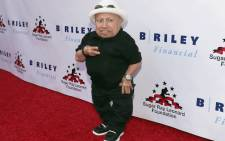"File: Verne Troyer attends B. Riley & Co. and Sugar Ray Leonard Foundation's 7th Annual ""Big Fighters, Big Cause"" Charity Boxing Night at Dolby Theatre on 25 May 2016 in Hollywood, California. Picture: AFP"