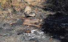 FILE: The site in a veld outside Centurion where two adults and a child were found bound, gagged and burnt to death. Picture: Christa Eybers/EWN.