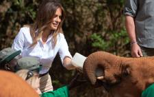 US First Lady Melania Trump feeds a baby elephant at the David Sheldrick Elephant Orphanage in Nairobi on 5 October 2018.  Picture: AFP.