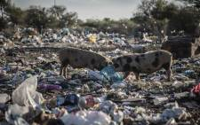 Some parts of Mahikeng are engulfed in litter. Picture: Abigail Javier/Eyewitness News