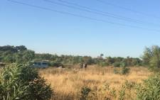 The scene where six men were found stoned and stabbed to death with their hands tied behind their backs in Kraaifontein. Picture: Masa Kekana/EWN.