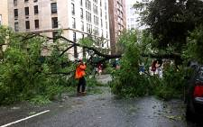 Hurricane Irene uprooted trees in New York City on 28 August 2011. Picture: Nadia Neophytou/EWN