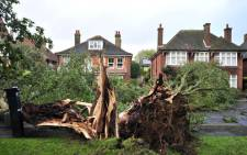 A fallen tree blocks a road due to the overnight storm in Brighton, southern England on 28 October, 2013. Picture: AFP
