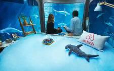 A view of a room in the Paris Aquarium. Picture: airbnb.com