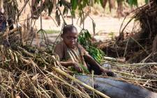 FILE: A child sits in crops that have been destroyed by Cyclone Idai in Estaquinha, west of Beira, in Mozambique. Picture: Christa Eybers/EWN.