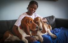 AtFrits staff make sure all the guests are petted and pampered during their stay. Picture: EWN