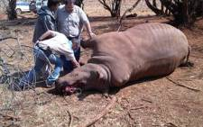 Nine suspected rhino poachers were on Sunday arrested at a game farm in Lephalale.