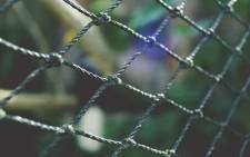 Picture: pexels.com