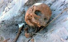 A human skull was unearthed in Noordhoek during a beach clean-up excursion on 18 April 2015. Picture: Glenn Ashton Ekogaia via Twitter