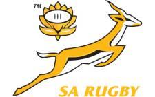 Springboks logo
