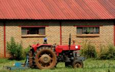 A farm worker on the job on the outskirts of Meyerton in the south of Johannesburg, Tuesday, 8 January 2013. Picture: Werner Beukes/SAPA.