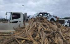Photos of this Ford Ranger bakkie disguised as a pile of thatch grass went viral on social media after police spotted the suspicious-looking truck at the Lebombo border post. Picture: SAPS.