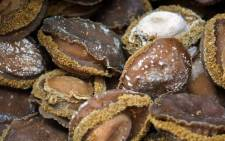 Two men are behind bars, after they were found to be in the illegal possession of abalone. Picture: AFP