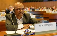 Professor Mthunzi Mdwaba. Picture: International Labour Organization ILO/Flickr.