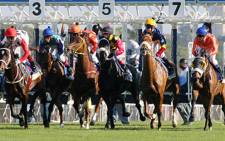 FILE: The first major event is expected to be the 2000 Guineas Stakes horse race at Newmarket on 6 June, although horse race meetings will be staged, without any spectators, starting on Monday at Newcastle and Tuesday at Kempton Park. Picture: Supplied