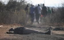Striking Lonmin workers walk past a dead body in Marikana mine on 14 August, 2012. The area has been gripped by violence which has resulted in at least 10 deaths. Picture: Eyewitness News