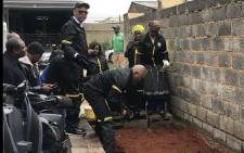 ANC secretary-general Ace Magashule helping with the set-up of a Winnie Mandela food garden at a house in Orlando. Picture: Clement Manyathela/EWN.