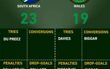 Springboks through to Semifinals