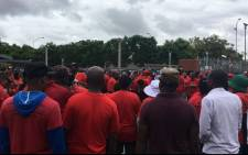 FILE: Protesting Nehawu workers. Picture: Mia Lindeque/EWN