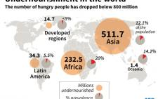 World map with regional breakdown of the undernourished.