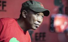EFF leader Julius Malema at the party's headquarters. Picture: Abigail Javier/EWN.