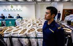 FILE: A customs officer stands in front of sacks of seized endangered pangolin scales displayed next to ivory elephant tusks (L) during a press conference at the Kwai Chung Customhouse Cargo Examination Compound in Hong Kong on 1 February 2019. Hong Kong customs officers unveiled a record seizure of pangolin scales on 1 February, the latest huge haul to underscore the city's central role in the lucrative and booming illegal wildlife trade. Picture: AFP