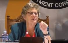 A screenshot of former Reserve Bank governor Gill Marcus at the PIC inquiry on 28 January 2019.
