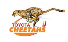 The Cheetahs logo. Picture: Toyota Cheetahs Facebook page