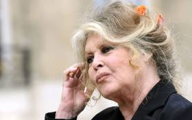 Former film star and animal rights activist Brigitte Bardot. Picture: AFP