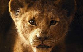 A screengrab from 'The Lion King' trailer. Picture: DisneyTheLionKing/Facebook