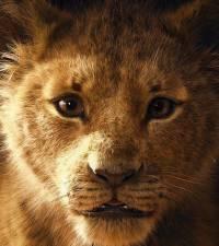 'The Lion King' rakes in R24.5mil across SA cinemas