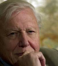 Natural wonder: Attenborough attracts 1 mn Instagram followers within hours