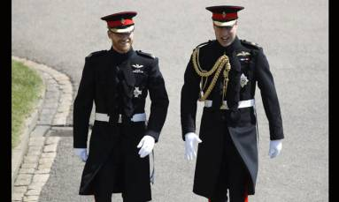 Prince Harry admits he and Prince William 'on different paths'