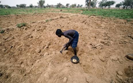 FILE: A boy digging for roots amid drought. Picture: United Nations.