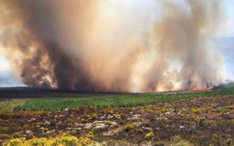 Overberg firefighters are battling a fire that has threatened farms and fynbos near Botrivier. Picture: @goFPA/Facebook.com.