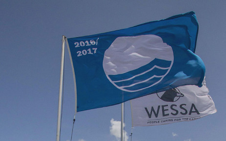 Blue flags. Picture: wessa.org.za
